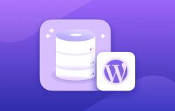 Wordpress Veritabanı Nasıl Açılır?