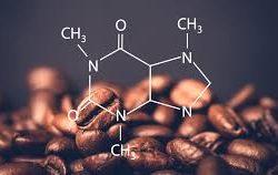 Kafein Nedir? Kafein Hakkında Her Şey!