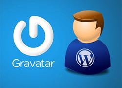 Wordpress Varsayılan Gravatar Değiştirme
