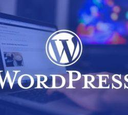 Wordpress Varsayılan Bileşenleri Kaldırma