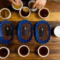 Kahve Terimleri: Cupping Ne Demek?
